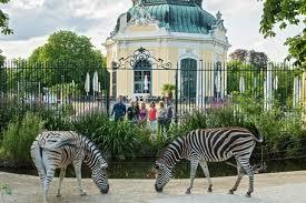 Tiergarten-Schönbrunn